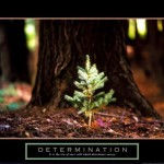 Inspirational and Motivational Posters
